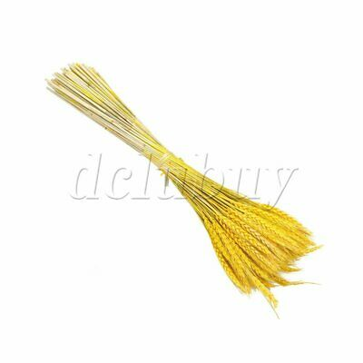 100 x Dried Wheat Bundle Dry Grass Flower Bouquet Golden 60cm Home Decor