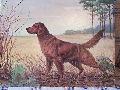 Vintage 1950'S Irish Setter Savitt Dog Hunting Lithograph