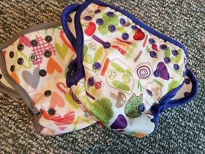 Blueberry Capri cloth diaper covers inserts EUC, 2 diapers size 1, heart veggies