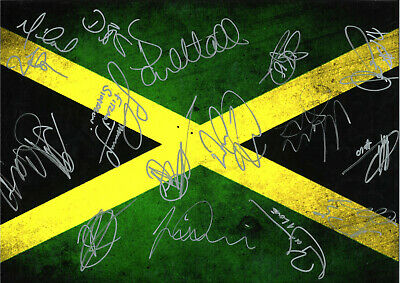 Jamaica FC Autographs Hand Signed 16 x 12 inch authentic football photo SS1241D