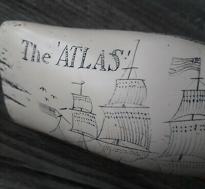 Scrimshaw Ship THE ATLAS 1822  Whale Tooth