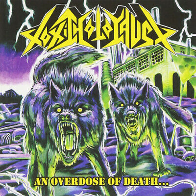 An Overdose Of Death... by Toxic Holocaust.