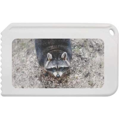 'Cute Raccoon' Plastic Ice Scraper (IC00001364)