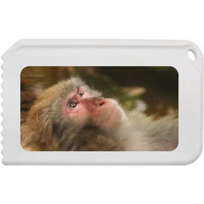 'Japanese Macaque' Plastic Ice Scraper (IC00001819)
