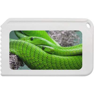 'Green Snakes' Plastic Ice Scraper (IC00001850)