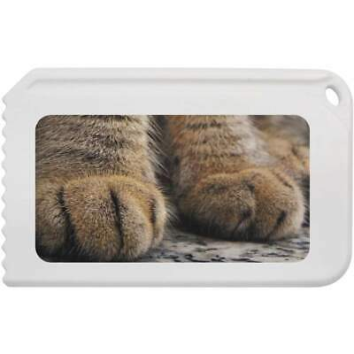 'Cat Paws' Plastic Ice Scraper (IC00003774)