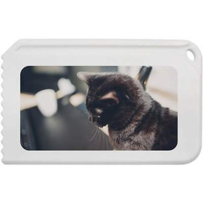 'Black Cat' Plastic Ice Scraper (IC00004009)