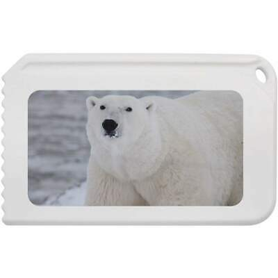 'Polar Bear' Plastic Ice Scraper (IC00005758)