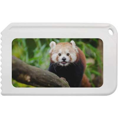 'Red Panda' Plastic Ice Scraper (IC00006569)