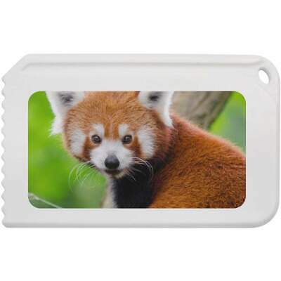 'Red Panda' Plastic Ice Scraper (IC00006084)