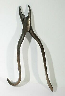 """Antique Tooth Extractor Forceps Pliers Marked """"Rees Cinn"""" 7"""" Long Ouch!"""