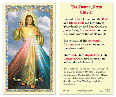 25 Laminated Holy Cards Divine Mercy Image Chaplet