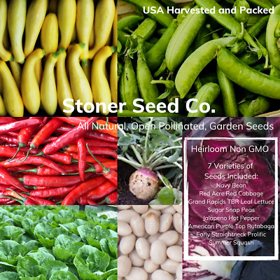 300+ Heirloom Vegetable Seed 6 Variety Garden Set #5 Emergency Survival Non-GMO