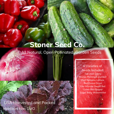 300+ Heirloom Vegetable Seed 6 Variety Garden Set #3 Emergency Survival Non-GMO