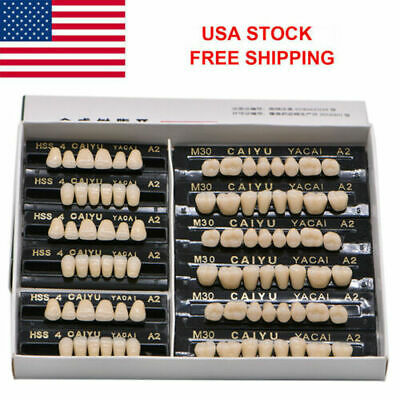 USA 3Set/84pc Dental Acrylic Resin Teeth Denture Shade 23# A2 Tooth Upper Lower
