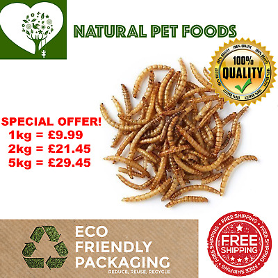 Dried Mealworm Premium Quality  UK No1 Farmer 1kg - 5kg - FREE NEXT DAY DELIVERY