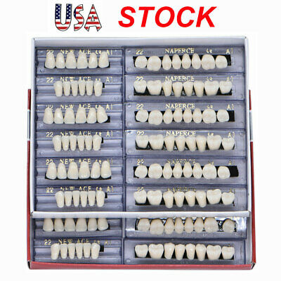 168Pc Dental Acrylic Resin Denture Shade 22# A1 Full Set Teeth Upper Lower Tooth