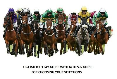 Betfair Back To Lay Trading Guide for USA Racing