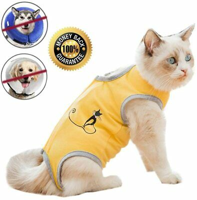 Cat Surgical Recovery Suit for Abdominal Wounds/Skin Diseases Small