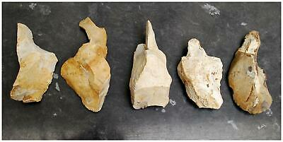 Paleolithic Acheulian hand axe tool early cave man British metal detecting find