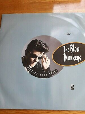 Blow Monkeys Digging Your Scene