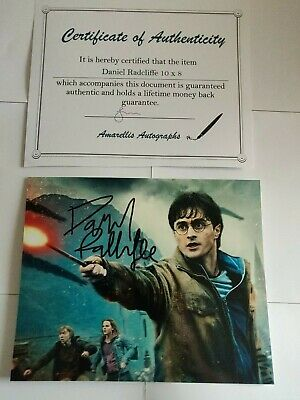 Daniel Radcliffe HARRY POTTER 10 x 8 Hand Signed Photo with COA
