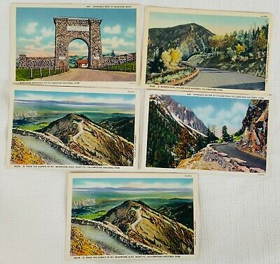 Lot of 5 Vintage Unused Linen Postcards - Yellowstone National Park Roads