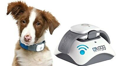 BRAND NEW - Tagg Pet Tracker, GPS for Dog Collar - Include 3 Mths Service & App.