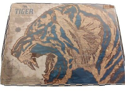 Anthony Petrie Animal Charts - Tiger 18x24       #15 of 100
