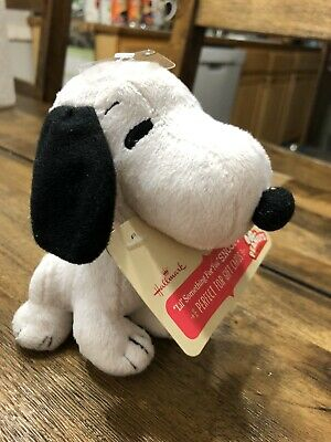"""Hallmark SNOOPY 8"""" Plush Gift Card In Mouth   Gift Card Holder Peanuts"""