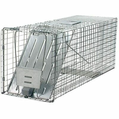 1079 Large 1-Door Humane Animal Trap For Raccoons, Cats, Groundhogs, Opossums