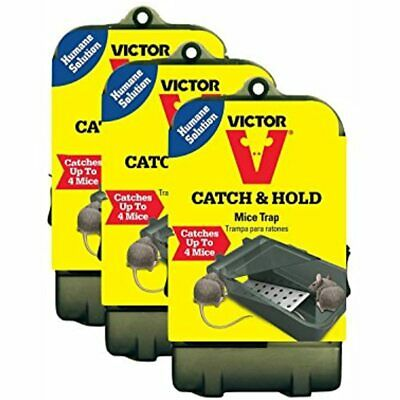 Multiple Catch Humane Live Mouse Trap M333 - Up To 4 Mice (3 Traps) Garden &amp