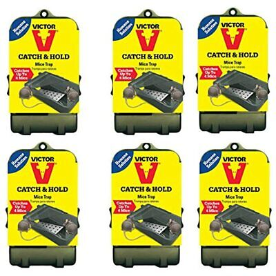 Multiple Catch Humane Live Mouse Trap M333 (Pack Of 6) Garden &amp Outdoor FREE