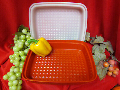 Season Serve JR. Tupperware Marinade Container Meat Cookie Keeper & Cover 1518