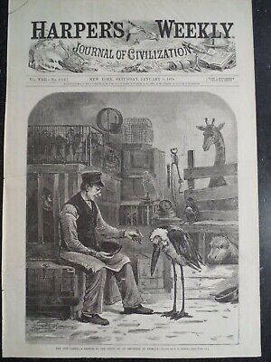 Depot Store Of An Animal Importer New York City Harper's Weekly 1878