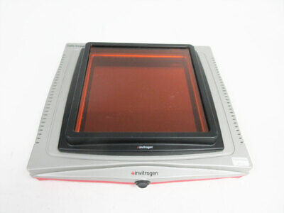 Invitrogen G6600 Safe Imager 2.0 Blue-Light Transilluminator 470 Nm