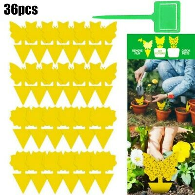 36PCS Fly Traps Sticker Gnat Trap Yellow Sticky Bug Trap Insect Pest Catcher Kit