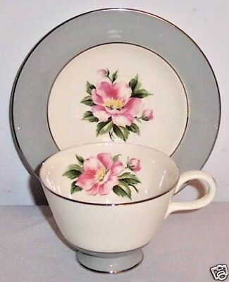 Empire Gray by Homer Laughlin Gray Footed Cup & Saucer