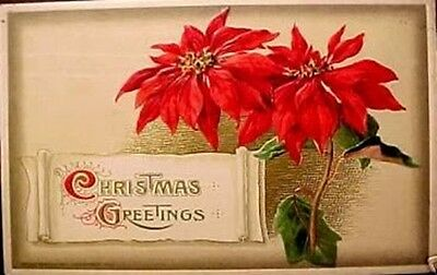 OLD Antique CHRISTMAS POINSETTIA Sheet  ADDRESS LABELS