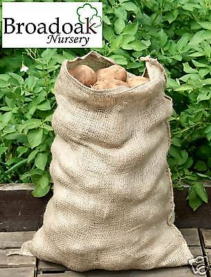 Jute Hessian Potato Veg Storage Sack HALF SIZE 10-15kg