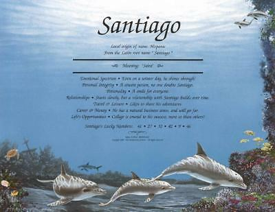 * Dolphin Personalized Name Meaning Print