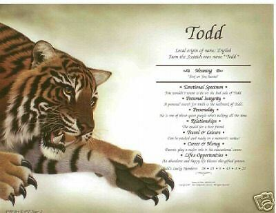 * Tiger 1 Personalized Name Meaning Print