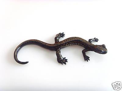 RARE Kaiyodo ChocoQ Series 8 Japanese Hakone Salamander Version A Figure
