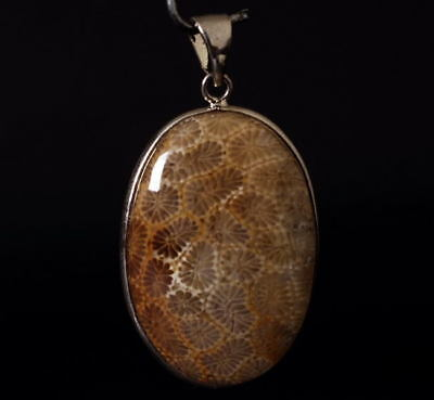 Chrysanthemum pattern Coral fossil! Amulet Pendant