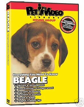 Pet Video Library Dog Breed Specific DVD Beagle