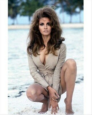 RAQUEL WELCH 8X10 PHOTO fine photo 256890
