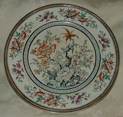 """Antique Till & Son 1850s SHANGHAE Hand Painted 9 1/2"""" DINNER Plate Staffordshire"""