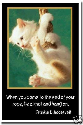 End of your rope - FDR Motivational Cat Kitty POSTER
