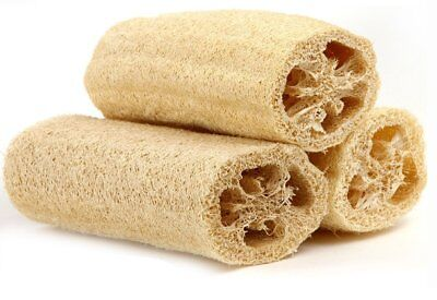 "Lot of 3x 6"" Natural Loofah Luffa Loofa Sponge Bath Shower Spa and Body Scrubber"