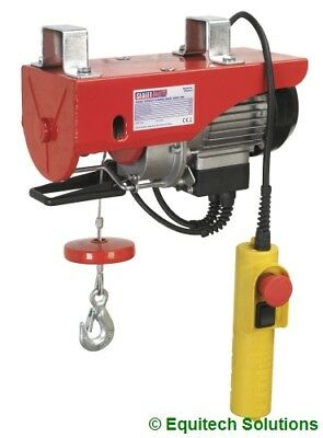Sealey Tools PH250 Electric Power Hoist Winch Lift 250Kg Scaffolding Site New